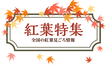 日本の紅葉2019見ごろ情報