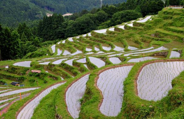 熊野・東紀州
