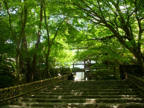 嵐山・嵯峨野